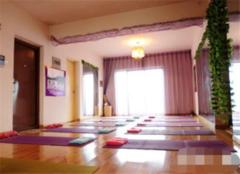 杭州瑜伽馆装修公司 杭州瑜伽馆装修多少钱