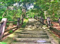 惠陽有什么好玩的地方 惠陽旅游景點大全