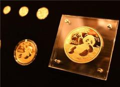2020版熊猫纪念币今日发售啦 一套金银纪念币共12枚