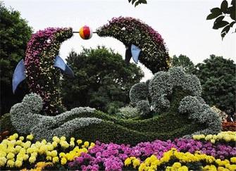 2019福州菊展什么时候开始 福州西湖菊花展时间地点活动一览无遗