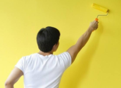 乳胶漆和硅藻泥哪个好 国外为什么不用硅藻泥