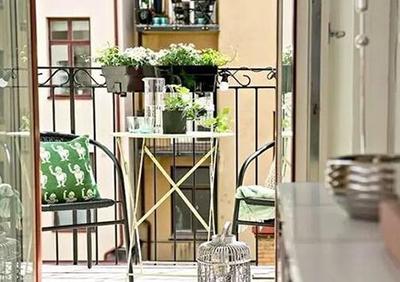 绿色植物学问大  家居摆设有门道