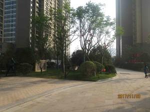 镇江新城吾悦广场2-2902