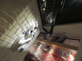 凡人庄 餐厅装修设计案例