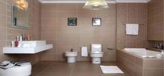 卫浴十 有哪些?哪个牌子好?