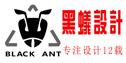 南京黑蚁装饰