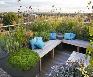 小型屋顶花园设计