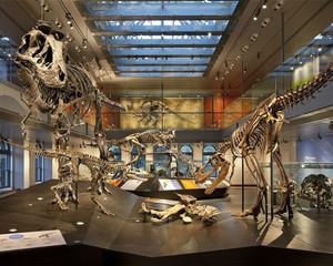 大型恐龙博物馆装修效果图