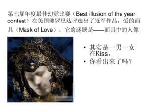 第七届年度最佳幻觉比赛冠军作品——爱的面具