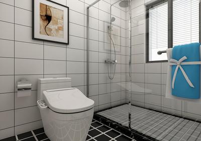 5米长方形卫生间布局图,最新长方形卫生间装修设计效果图