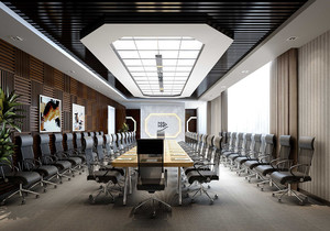 大型豪华会议室效果图,大型会议室吊顶效果图