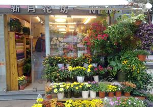 简单大方鲜花店装修效果图,鲜花店室内装修效果图