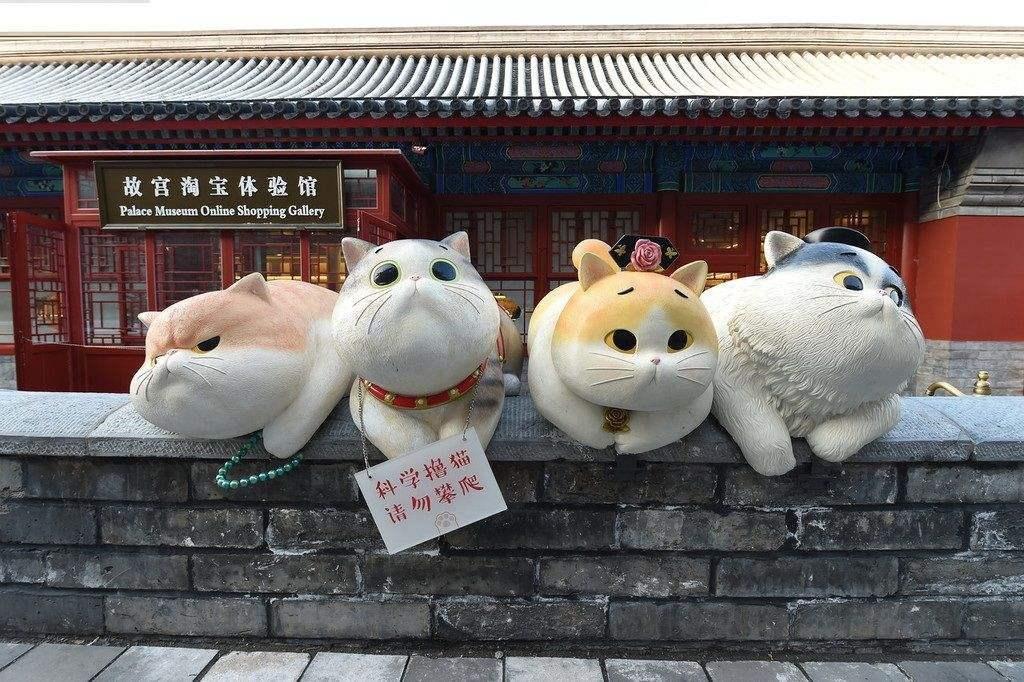故宫现巨型御猫,故宫巨大御猫图片