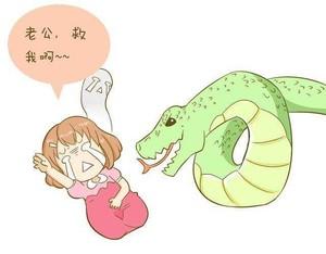 孕妇梦见蛇,孕妇梦见白蛇有两条尾巴,孕妇梦见白蛇是男是女
