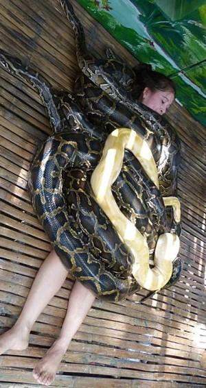 �艋疑��z��蛇吃人看著易水寒目光冰冷倒,�粢�大蛇△吃人,�粢�蟒蛇←吃人