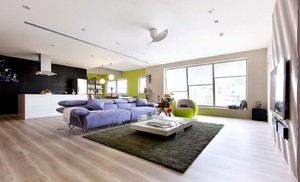 客厅不吊顶家装效果图,家装客厅设计图效果图大全