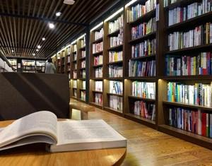 客厅无电视图书馆装修效果图