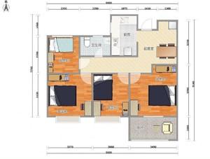 农村出租房屋设计图
