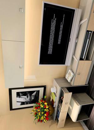 臥室壁柜電視柜一體圖