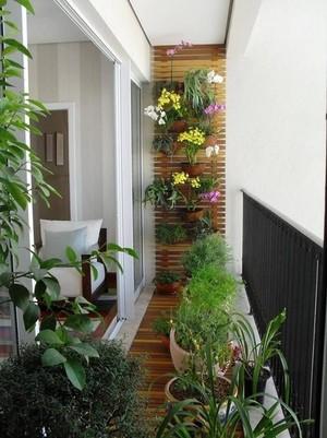 3平米陽臺植物擺放圖片