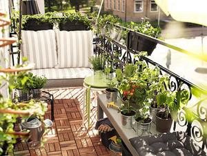 4平米阳台植物摆放图片