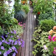 陽臺美式花園不規則戶型裝修