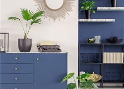 藍白客廳裝修實景圖大全