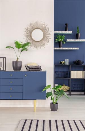 蓝白客厅装修实景图大全