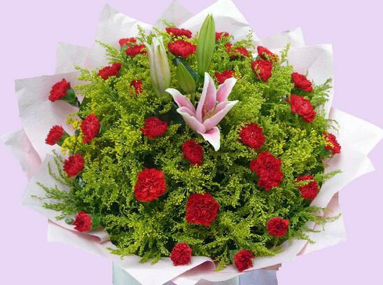 康乃馨花束图图片