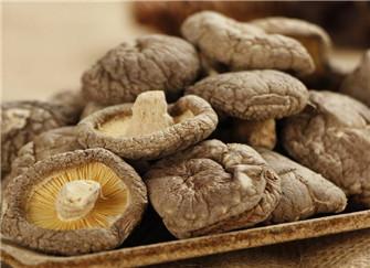 香菇的营养价值是什么 有哪些功效和作用呢