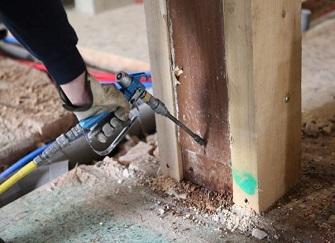别墅装修如何防治白蚁 装修什么阶段做防白蚁